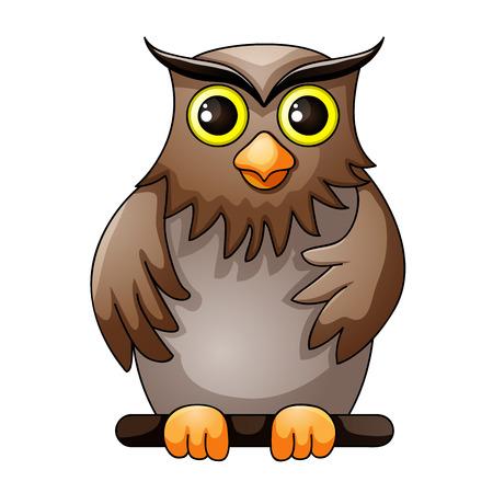 owl illustration: Cute owl cartoon
