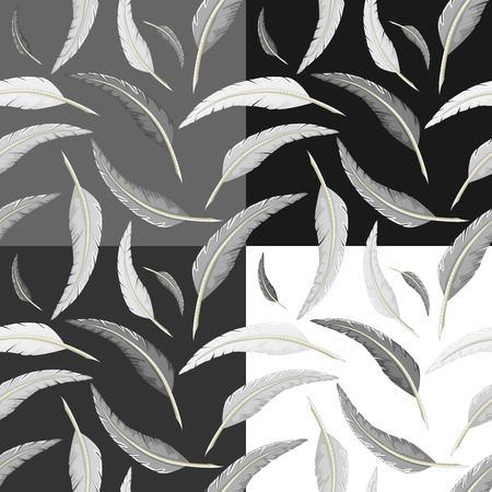 quill: White and black quill pattern