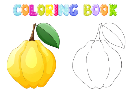 quince: Coloring quince on white