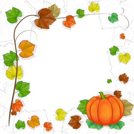 pilgrim costume: Thanksgiving background with pumpkin