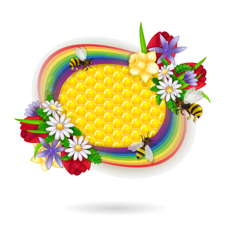 golden daisy: Spring flowers and bee over honeycombs and rainbow background