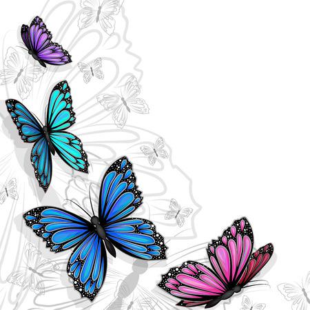blue butterfly: Butterfly card