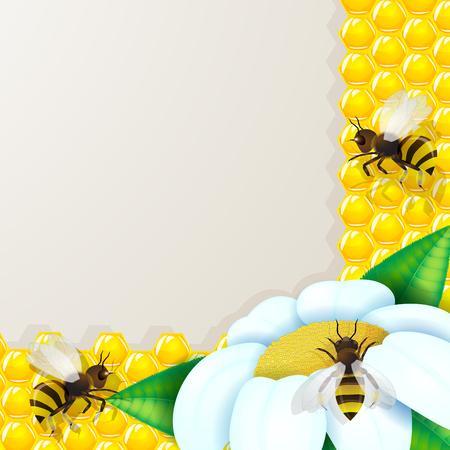 golden daisy: Bee with flowers and honeycombs