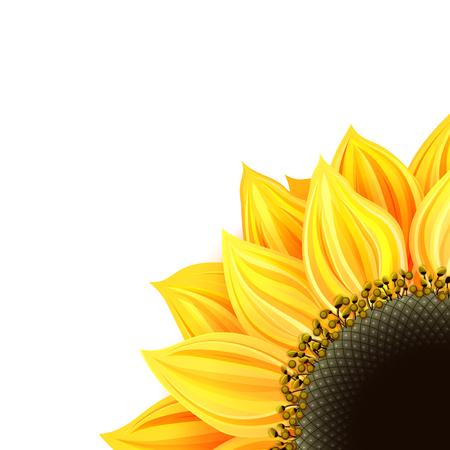 stamen: Sunflower card Stock Photo