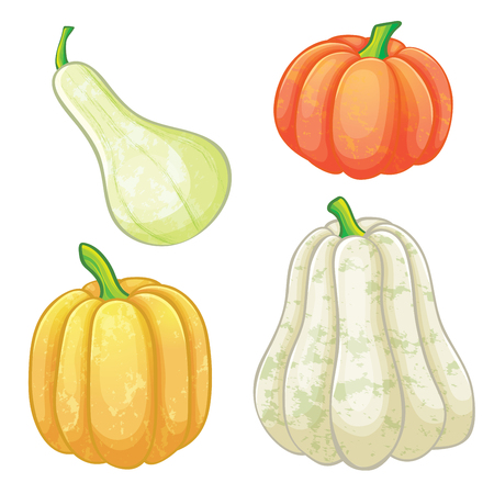 Set of different or various size and shapes of  pumpkins, isolated on white