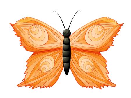Farbiger Schmetterling lokalisiert auf weißem Hintergrund . Vektor-Illustration Standard-Bild - 98105899