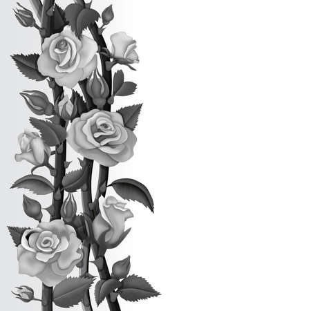 Card with white and black roses