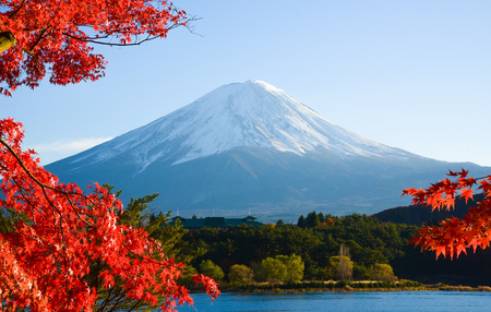 autumn sky: Mt.Fuji in autumn
