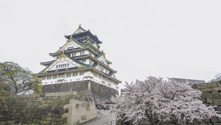Japan Osaka castle with cherry blossom. Japanese spring view.
