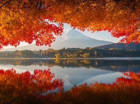 Mt.Fuji in autumn,morning