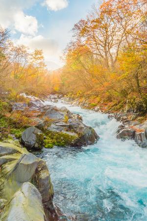 cours d eau: watercourse at nikko, japan sunset Banque d'images