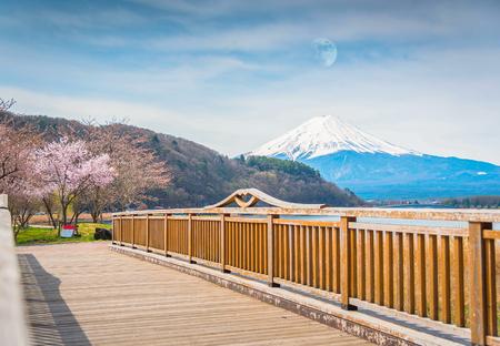 Mountain Fuji in spring ,Cherry blossom Sakura ,moon