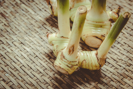 threshing: rhizome of galangal on weave threshing basket , vintage Stock Photo