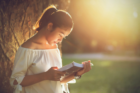Asian girl reading book at park in summer sunset light. asian woman reading book in Thailand. asian Beautiful woman reading a book at big tree. Stock Photo