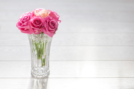 amorousness: magenta roses with one coral rose on white background