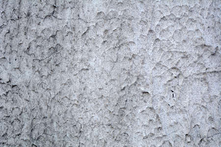 textured wall: Textured grey textured background wall. Macro photography Stock Photo