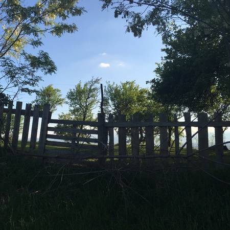 fence: Wood fence