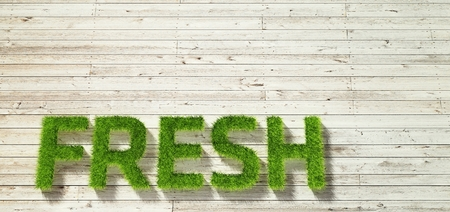 white wood: fresh made of grass on white wood background