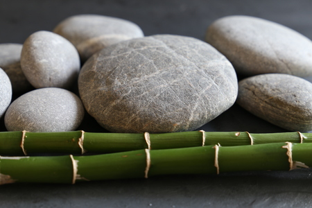 rounded circular: grey pebble stone with green bamboo grove