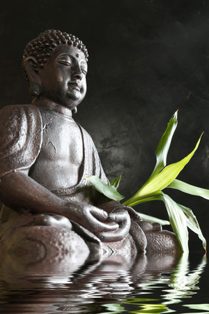Buddha in meditation with bamboo and water
