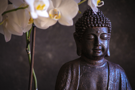 Buddha in meditation with orchid on dark background Stockfoto - 116727252