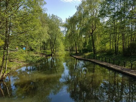 beautyful water canal in the spree forest Standard-Bild