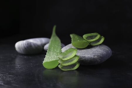 fresh aloe vera blower with spa stones on dark background