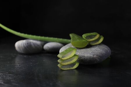 fresh aloe vera blower with spa stones on dark background.
