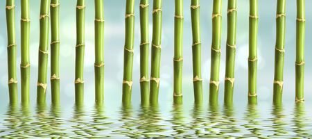 beautiful spa background with bamboo and water.