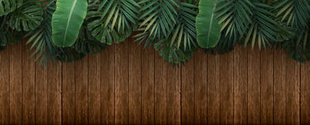green tropical leaves on wooden background, 3d rendering 写真素材