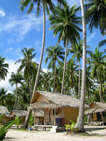 Tropical beach with bungalows and palm trees, Chang Island, Thailand photo