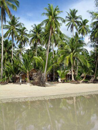 chang: Tropical palm beach, Chang Island, Thailand Stock Photo