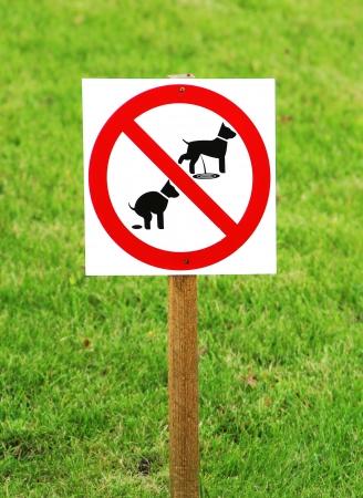 pis: No caca de perro y signo pissing Foto de archivo