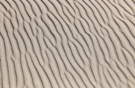 Sand wavy texture photo