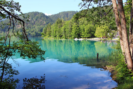 bled: Beautiful Bled lake in Slovenia