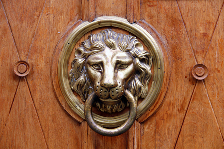 lion head: Old wooden door decorated with a lion head as a knocker