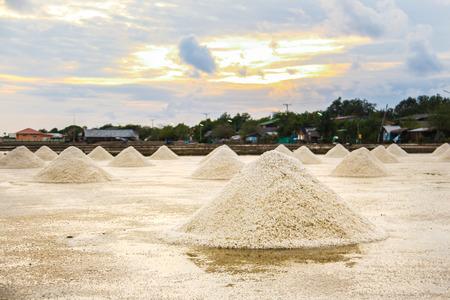 salina: Beautiful landscape of a summer with a salt farm in Samutsakorn, Thailand