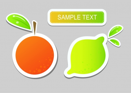 fruits with text area Illustration
