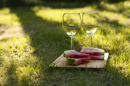 Apple cider and watermelon on the summer picnic