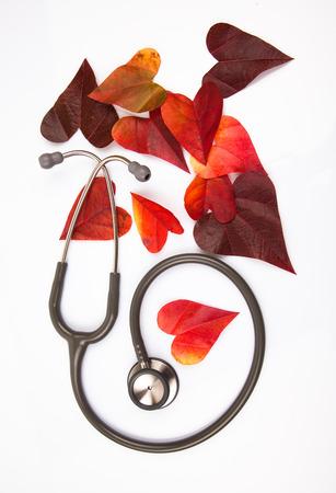 Stetoscope with a heart shaped leaf
