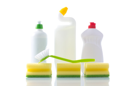 Subjects for sanitary cleaning a house photo