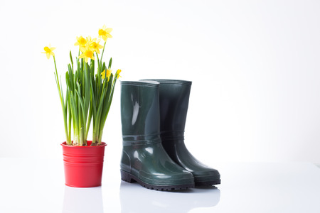 garden boots and yellow daffodils in red pot