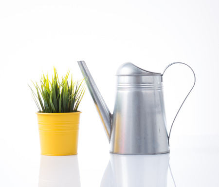 Metal watering can and grass in yellow pot photo