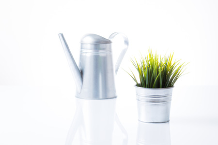 Metal pot and watering can photo