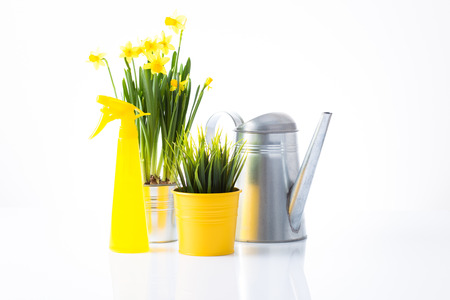 Garden concept with yellow accessories