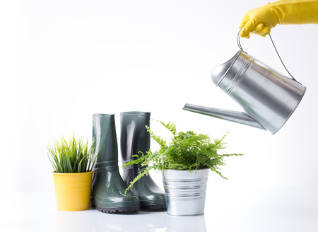 replanting: Watering flowers wit metal watering can Stock Photo