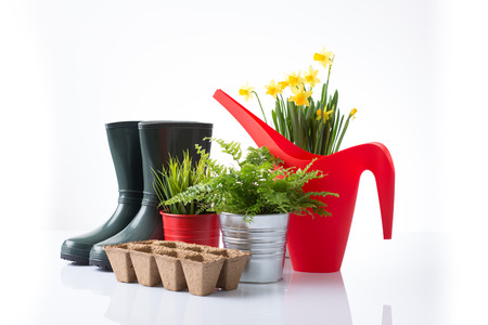 Red watering can, garden boots, pots and flowers isolated on white