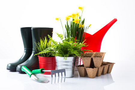 Garden equipment with green plants and yellow flowers over white background