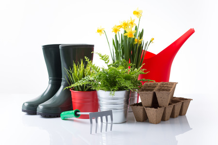 Garden equipment with green plants and yellow flowers over white background photo