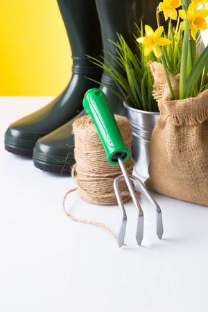 Garden tools - close up